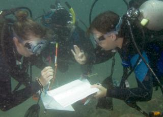 Underwater communication is essential and challenging