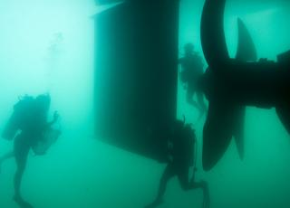 Smithsonian Research Divers Sample Biofouling on Ship Hull in Bermuda
