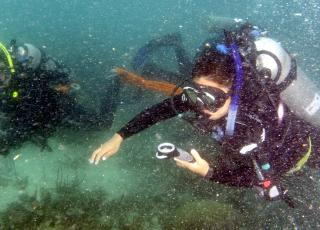 Underwater navigation is an essential skill taught at the Smithsonian Scientific Diving Course