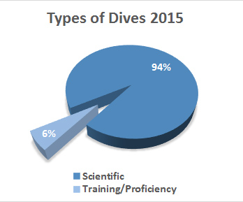 Types of Dives 2015
